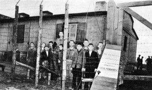 Prisoners at the Hannover-Ahlem concentration camp on April 10, 1945, the day they were liberated. Sel Dante simply remembers the ten-foot barbed wire fence.